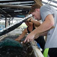 cei_aquaculture